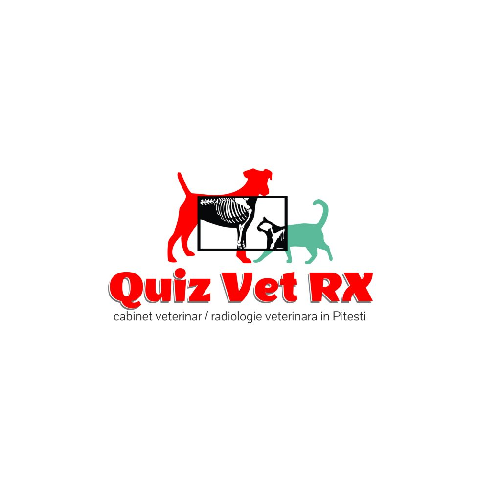 Logo Quiz Vet RX