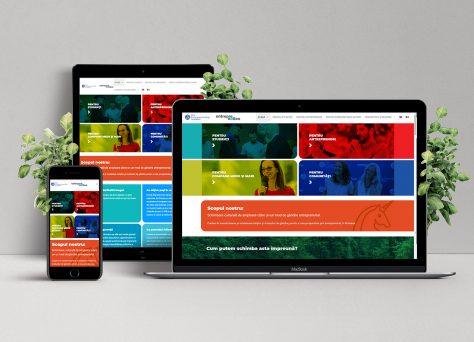 creare-site-universitate-de-business
